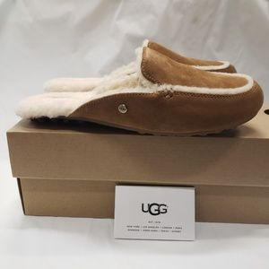 Womens UGG Lane Chestnut